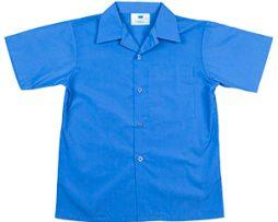 summershirt1